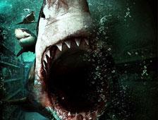 Tráiler restringido para el thriller Bait 3D