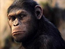 Nuevas fotos del set de Dawn of the Planet of the Apes dan pistas sobre lo que ocurrirá en la película