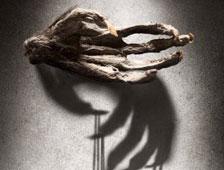 Trailer para el thriller The Monkeys Paw, con Stephen Lang y CJ Thomason