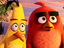 El trailer para la película Angry Birds está aquí!